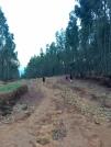 rtw ethiopia 2
