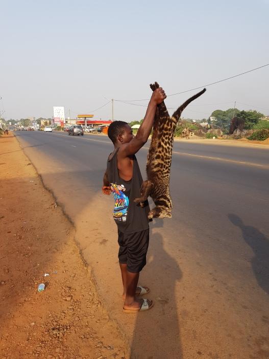 rtw liberia 25