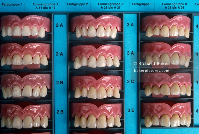 Liechtenstein - Schaan - Acrylic teeth samples